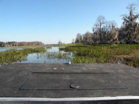 Vista de dentro do airboat