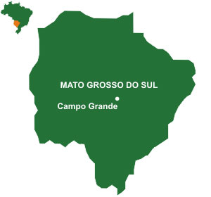 Mapa do estado Mato Grosso do Sul