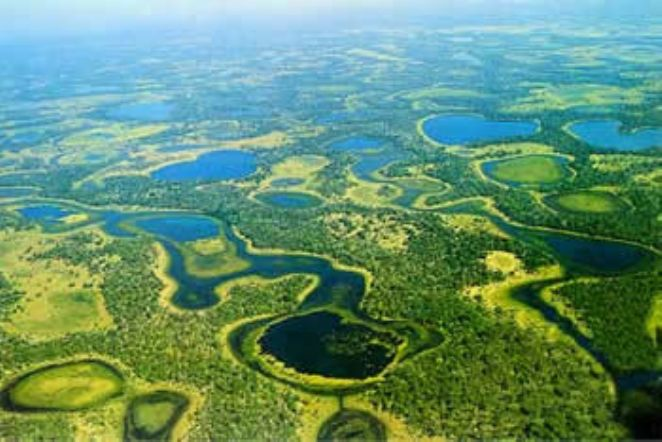 fotos aereas do pantanal